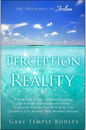 A Perception of Reality